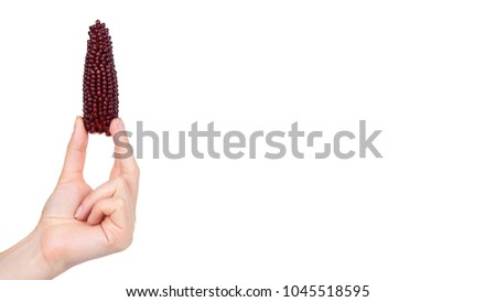 Indian Corn Stock Images, Royalty-Free Images & Vectors | Shutterstock