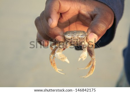 Indian man holding crab, India