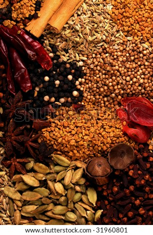 Indian spice - stock photo