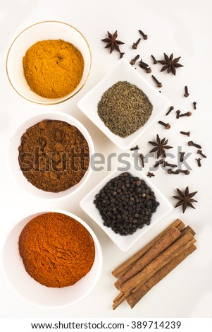 Indian spices and herbs on white background - stock photo