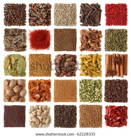 Indian spices collection isolated on white background - stock photo