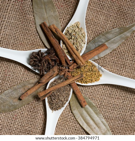 indian spices in white spoon, indian colourful spices, group of indian spices, group of spices, india and spices arranged on sackcloth. Selective focus with shallow depth of field. - stock photo