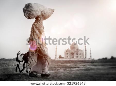Indian Woman Carrying on Head Goat Taj Mahal Concept - stock photo