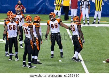 INDIANAPOLIS, IN - SEPT 2: Cincinnati Bengals prepare for line-up during football game between Indianapolis Colts and Cincinnati Bengals on September 2, 2010 in Indianapolis, IN - stock photo