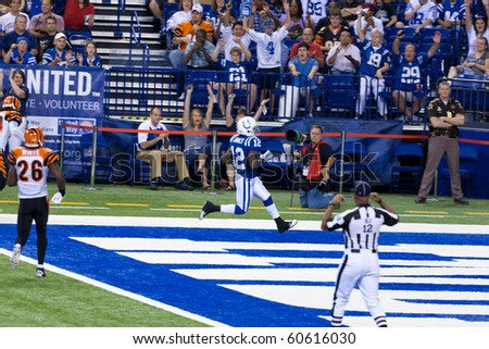 INDIANAPOLIS, IN - SEPT 2: Colts running back Brandon James scores a touchdown in football game between Indianapolis Colts and Cincinnati Bengals on September 2, 2010 in Indianapolis, IN - stock photo