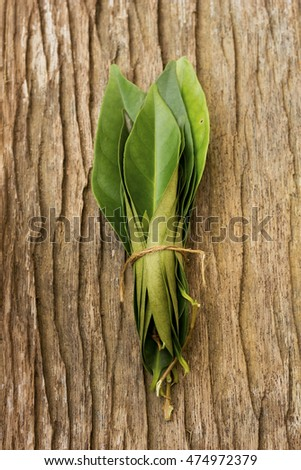 Indonesian Bay Leaf also known as Daun Salam; non-sharpen file