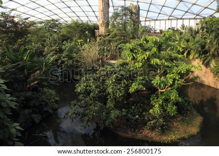 Indoor Rainforest with lush vegetation and a river.