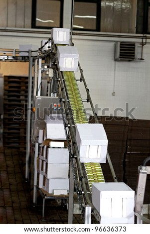 Industrial conveyor line transporting package boxes - stock photo