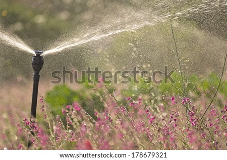 industrial irrigation system watering a flower field - stock photo