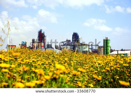 Industry and nature. A cement factory behind a wild flowers meadow.