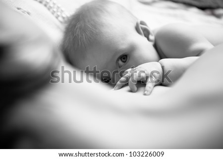 infant drinking milk and watching in astonishment at the camera at the forefront of children's hand with a sweet cute chubby little fingers, the picture is black and white - stock photo