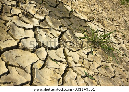 Infertile land burned by the sun: famine and poverty concept - stock photo