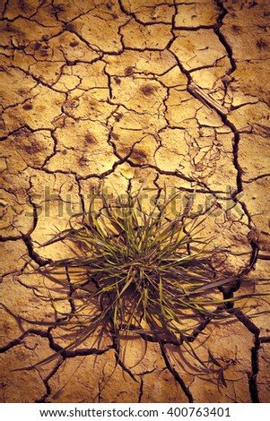 Infertile land burned by the sun: famine and poverty concept - toned image with copy space - stock photo
