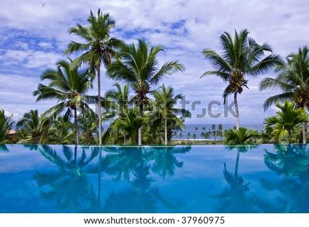 Infinity Pool with Coconut Trees - stock photo