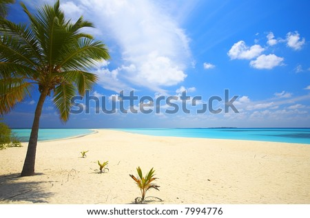 Infinity tropical beach on the island Kuredu in the Indian Ocean, Maldives - stock photo