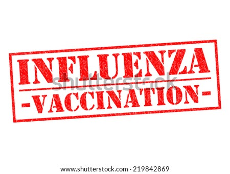 INFLUENZA VACCINATION red Rubber Stamp over a white background. - stock photo
