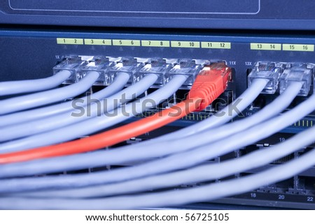 Information technology telecommunication computer network. Ethernet cables connected to internet switch equipment.