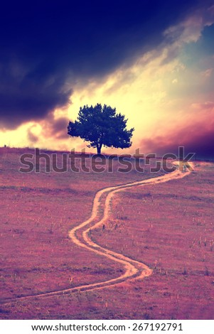 infrared filtered abstract landscape with alone tree and dirt road  - stock photo