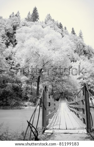 Infrared photography with a bridge and forest - stock photo