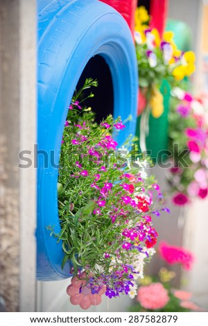 Ingenious, original and environmentally friendly method of recycling of tires car as planters (detail of the blue one). - stock photo