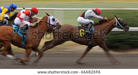 """INGLEWOOD, CA - DEC 5: Jockey David Flores pilots """"Bad Boy"""" (#6) to victory in a claiming race at Hollywood Park on Dec 5, 2010 in Inglewood, CA. - stock photo"""