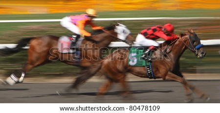 INGLEWOOD, CA - JUL 2: Jockeys race their mounts to the finish in a maiden race at beautiful Hollywood Park on Jul 2, 2011 in Inglewood, CA.