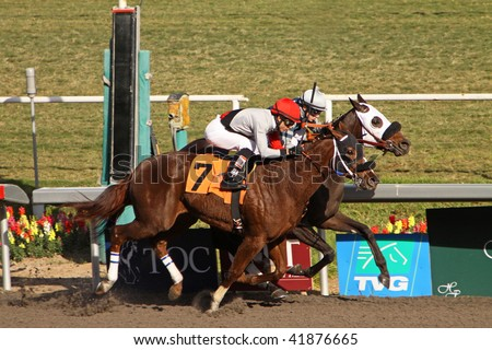 "INGLEWOOD, CA - 29 NOV: ""Bailmeoutbugsy"" (on the rail) and jockey Joe Talamo outrun ""Cafe Con Leche"" (#7) and Alonso Quinonez to win the 3rd race at Hollywood Park on Nov. 29, 2009 in Inglewood, CA."