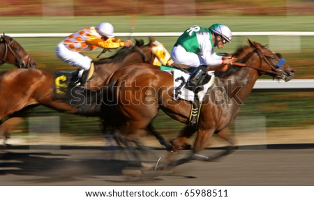 INGLEWOOD, CA - NOV 26: Gilded Gem (#2), under jockey Joel Rosario, surges to the wire to win an allowance race at Hollywood Park on Nov 26, 2010 in Inglewood, CA. - stock photo