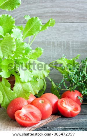 Ingredients for fresh salad. Tomatoes, lettuce and thyme. - stock photo