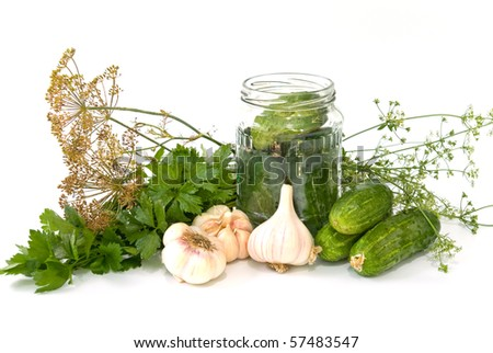ingredients for preserving on white background - stock photo