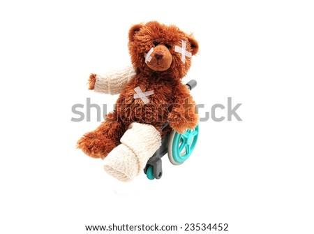 Injured bear in wheelchair - stock photo