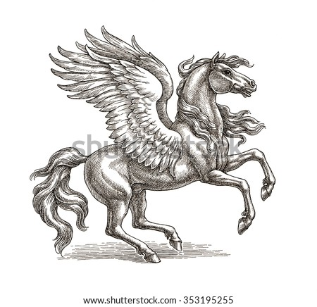 Ink and pen drawing, the winged horse Pegasus on white background.