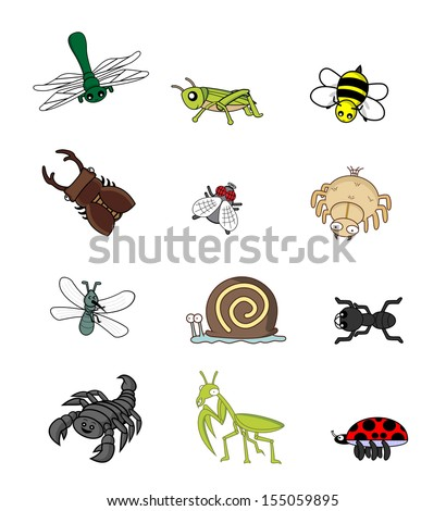 insect animal set