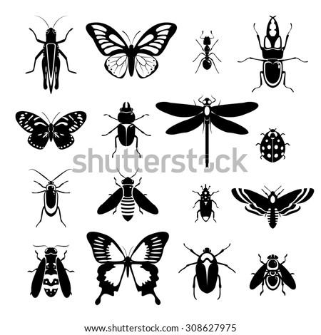 Insects black and white decorative icons set with grasshopper bug ladybug isolated  illustration. - stock photo