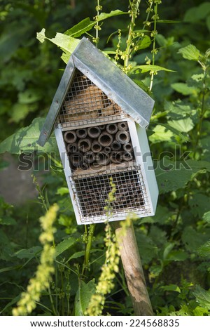 Insects house, insects hotbed, insects - stock photo