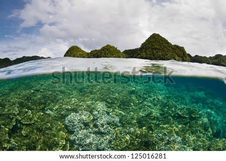 Inside a lagoon, a healthy and diverse coral reef grows near a group of limestone islands in the Republic of Palau. - stock photo