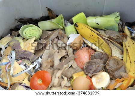 Inside of a home wormery or worm bin with vegetable, fruit, general kitchen food waste and shredded newspaper.