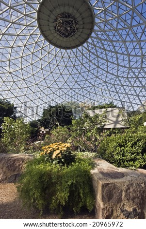 Inside The Dome Botanic Garden In Milwaukee.