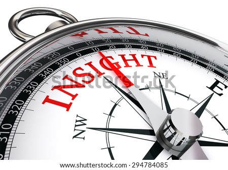 insight red word concept compass isolated on white background - stock photo