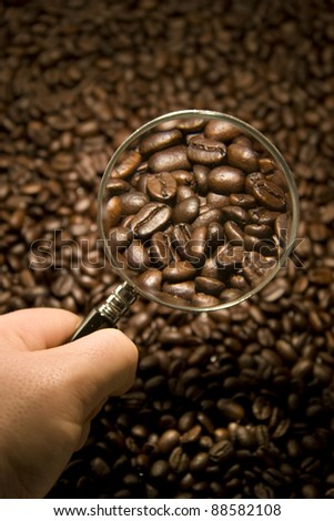 Inspecting Coffee Beans with a magnifying glass - stock photo