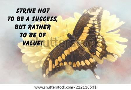 Inspirational quote about life and love, with a beautiful Giant Swallowtail  Butterfly  on a textured background  - stock photo