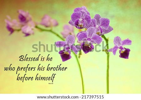 Inspirational quote about life, love, and spirituality by Baha'u'llah  with a beautiful purple orchid on a green/yellow background  - stock photo