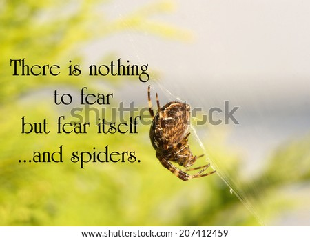 Inspirational quote on fear by an unknown author with a huge spider hanging in its web.