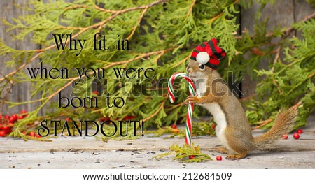 Inspirational quote on individuality by Dr. Suess with a little squirrel proudly wearing his Christmas hat,  holding a candy cane in the winter.  - stock photo