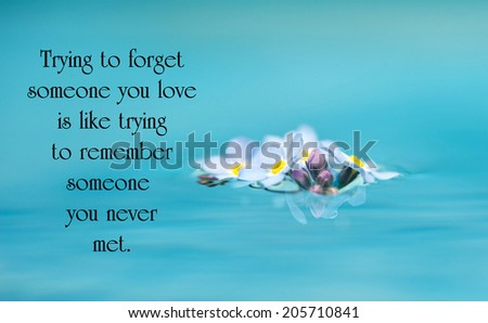 Inspirational quote on love by an unknown author with beautiful forget me not flowers floating on water. - stock photo