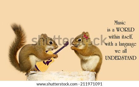 Inspirational quote on music by Stevie Wonder with a young male squirrel playing a love song for his sweetheart.