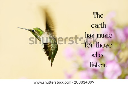Inspirational quote on nature by George Santayana with a beautiful hummingbird in motion in the garden. - stock photo