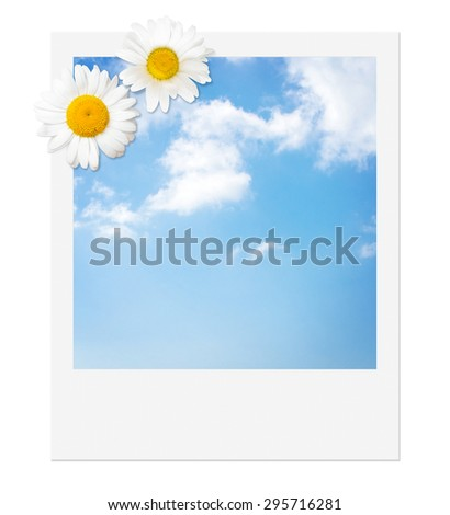 Instant picture of blue sky with cumulus clouds, decorated with two oxeye daisies - stock photo
