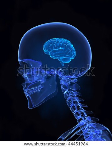Business Stupidity Stock Photos, Images, & Pictures  Shutterstock