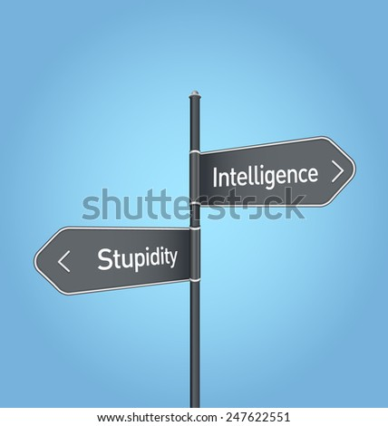 Intelligence vs stupidity choice concept road sign on blue background - stock photo